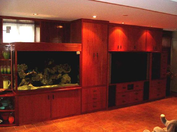 built in aquarium, entertainment unit and storage